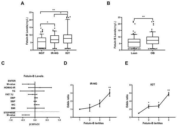 Serum fetuin-B levels in the study population.