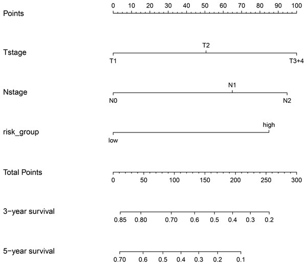 Nomgram plot for the composite prognostic model (M5).