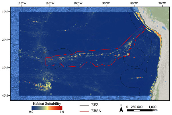 Predicted habitat suitability for the stony coral ensemble model.