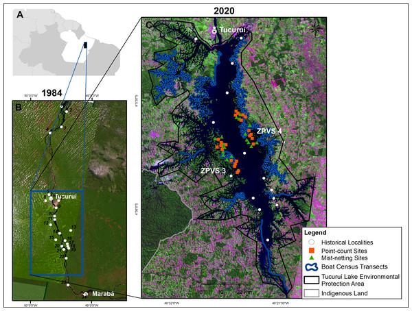 Map of the study area in eastern Brazilian Amazonia.