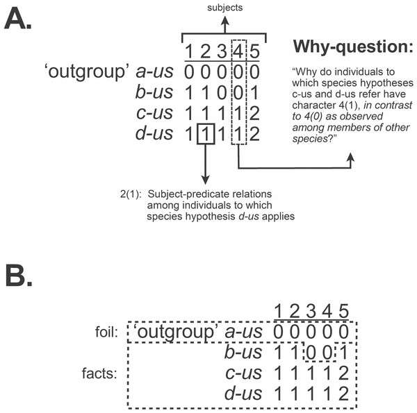 Observation statements, why-questions, and data matrix.