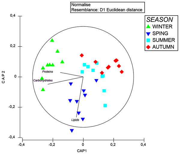CAP plot of organic matter composition in tissue of A. acaule in different seasons.