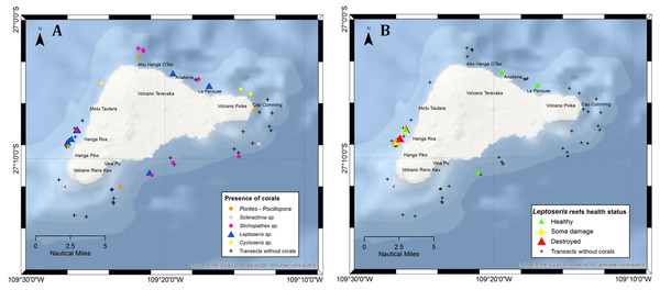 Transects surveyed off Rapa Nui in the present study showing sites with mesophotic corals.