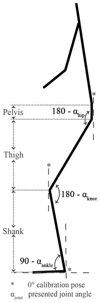 Joint angle definitions.