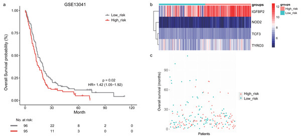 The survival analysis of the lymphocyte activation-associated gene signature in GSE13041 (n=191).