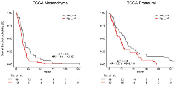 Survival analysis for GBM patients according to TCGA mesenchymal and proneural subtypes.