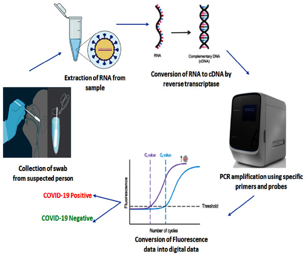 Illustration of RT-PCR Assay protocol for detection of COVID-19.