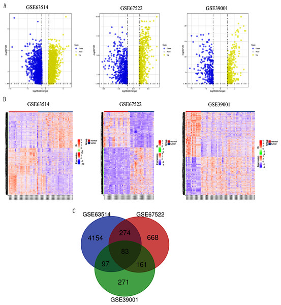 Identification of differentially expressed genes in CC based on the GEO database.
