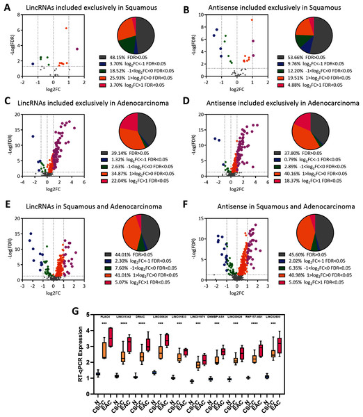 EAC LncRNAs were significantly overexpressed in EAC.