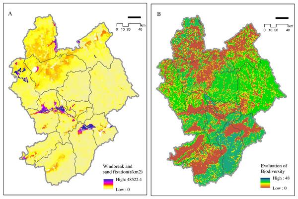 Importance of (A) windbreak and (B) biodiversity maintenance.