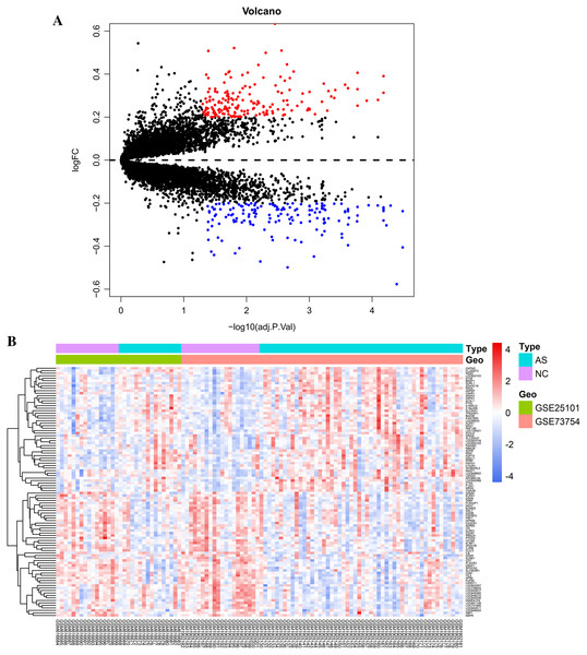 Visualization of differentially expressed genes (DEGs).