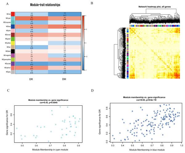 Correlation matrix of the obtained module epigenetic values obtained 15 modules were identified.