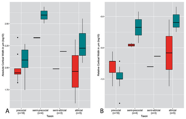 Boxplots showing variation in cortical thickness by developmental mode, where red represents measurements of the humerus and green measurements of the femur.