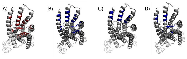 Predicted E2 binding sites by ConDockSite, CASTp, SiteHound, concavity.
