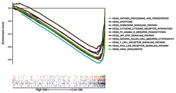 Gene Set Enrichment Analysis of top 10 enriched pathways in risk signature.