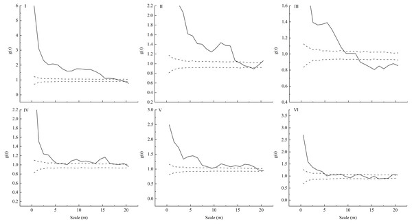 Spatial distribution pattern of different plots (I-VI) of L. principis-rupprechtii regenerated seedlings in the Guandi Mountains.