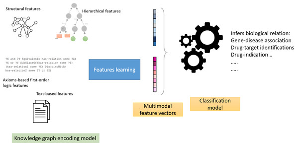 Illustration of the general workflow of our experiments.