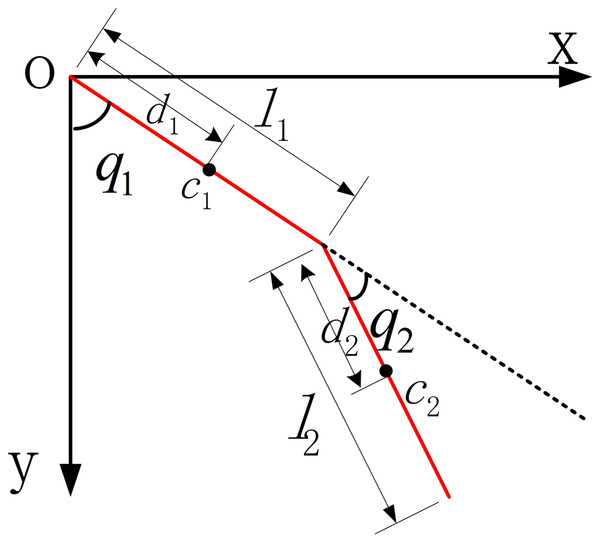 The dynamic model of LLRR.