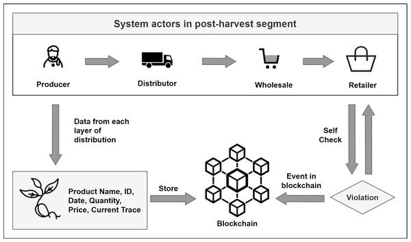 Timestamping distribution data to blockchain.