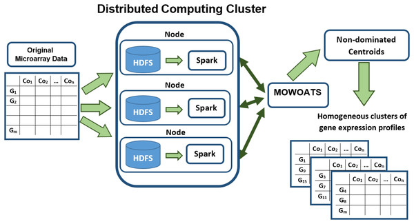 A flow diagram of analyzing Microarray data using MOWOATS executed in parallel over the Spark computing cluster.