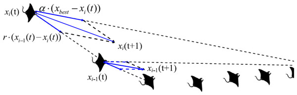 Chain foraging behavior in the 2-D space illustration (Zhao, Zhang & Wang, 2020).
