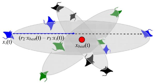 Somersault foraging behavior in the MRFO illustration (Zhao, Zhang & Wang, 2020).