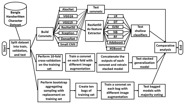 Overview of the workflow of the study.