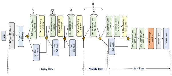 Xception architecture details.