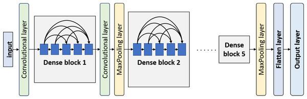 Overview of DenseNet architecture.