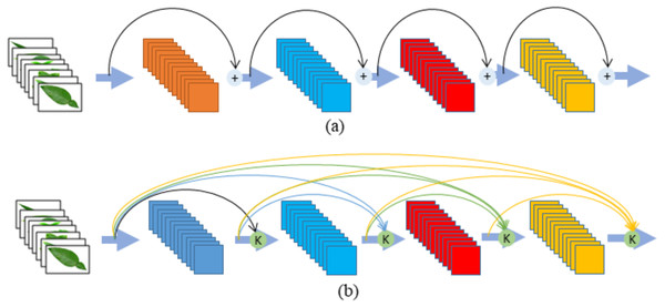 (A) ResNet (B) DenseNet Module.