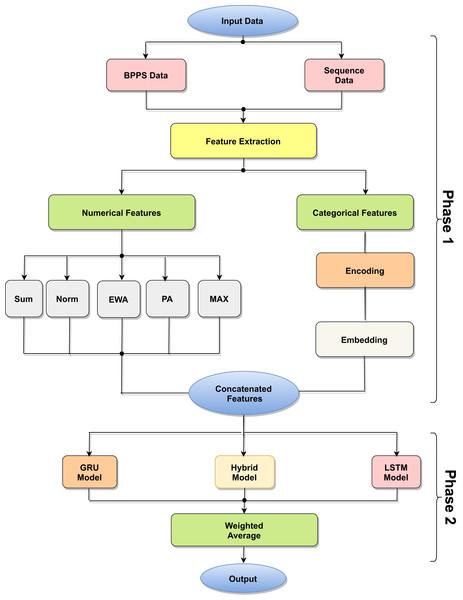 Model architecture process.