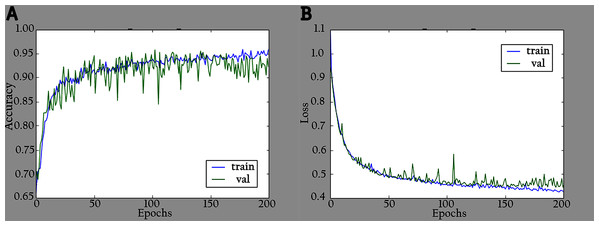 Accuracy and loss graphs for KL-MOB on training and validation of the enhanced images: (A) accuracy and (B) loss.