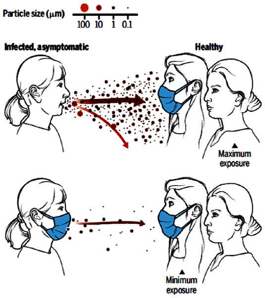 A cartoon showing the importance of face mask in reducing transmission.
